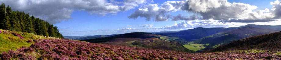 Busrundreise Irland Wicklow Hills