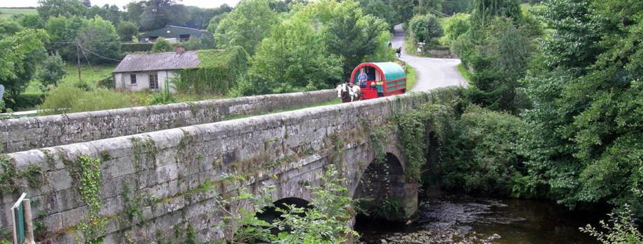 Irland Planwagen