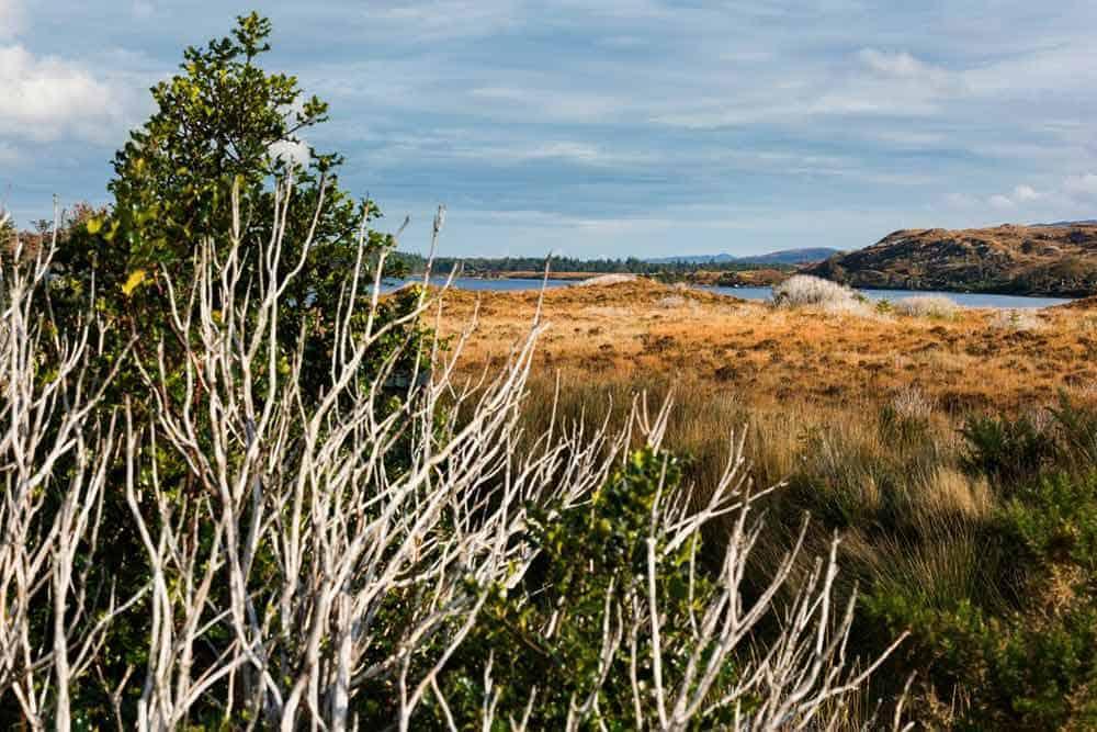 Glenveagh Nationalpark, Irlands Nationalparks