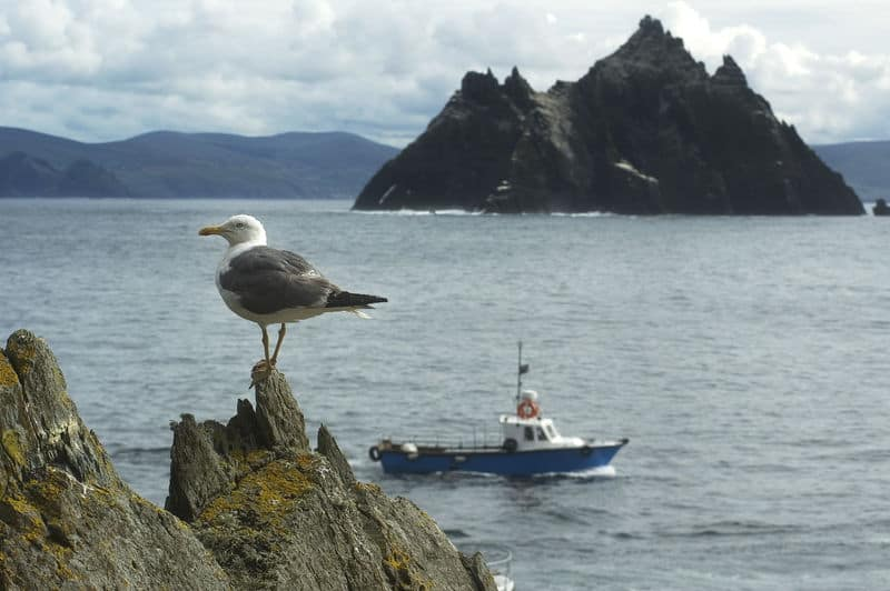 Skellig Islands im Co. Kerry