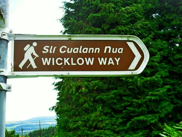 Wicklow Way Wegweiser