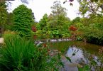 Mount Usher Garden Wicklow