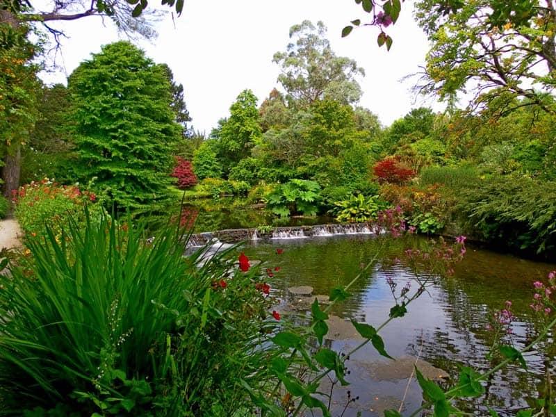 Mount Usher Garden Wicklow