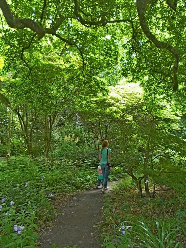 Mount Usher Gardens Wicklow