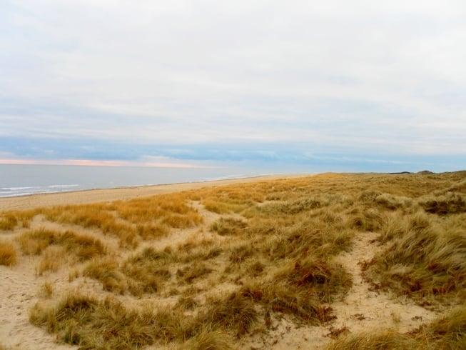 Irlands historischer Osten Ostküste Strand