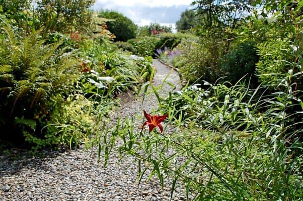 County Kildare Burtown House Gardens