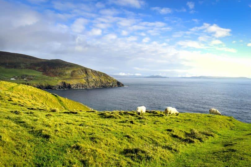 Frühling in Irland