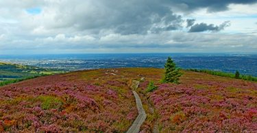 Dublin Mountains Way
