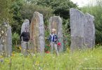 Brigits Garden Irland